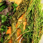 Fresh Herbs for teas, soups, seasonings and everything else: basil, chamomile, rosemary, lemon grass, thyme